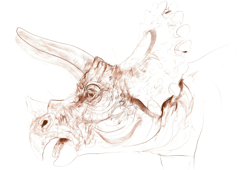 Triceratops VI