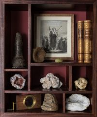 Wonder Cabinet with Stone Aged Neanderthal Tool