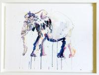 Elephant - Original