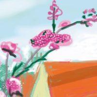 iPad Drawing No. 778, 17th April