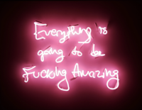 Fucking Amazing (Pink on Black) Artist Proof - Neon