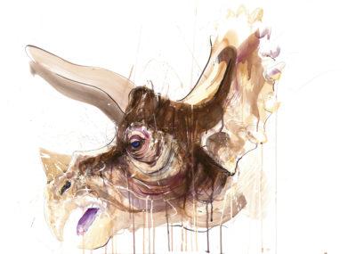 Triceratops V