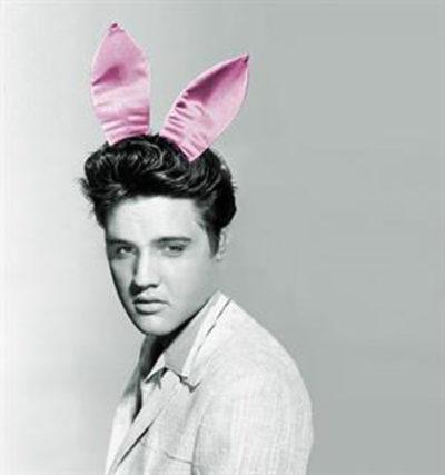 Elvis / Playboy - Mid Size