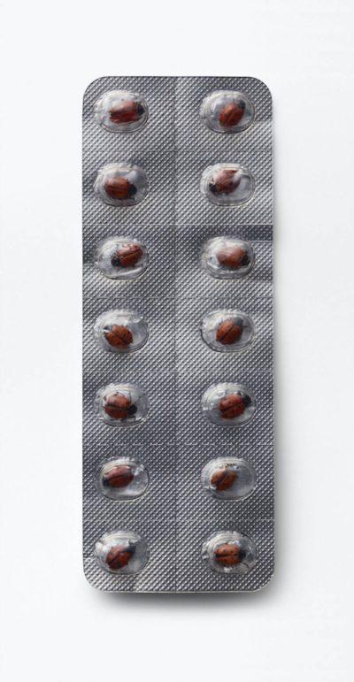 Ladybird Pill Packet (Small)