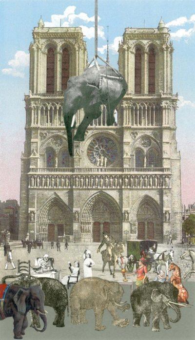 Lowering Elephants - Paris Suite
