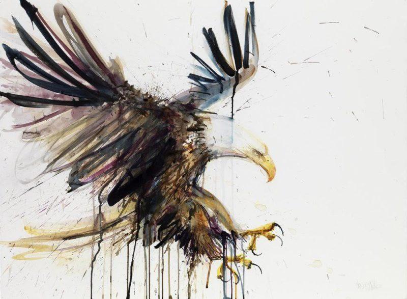 Eagle XL