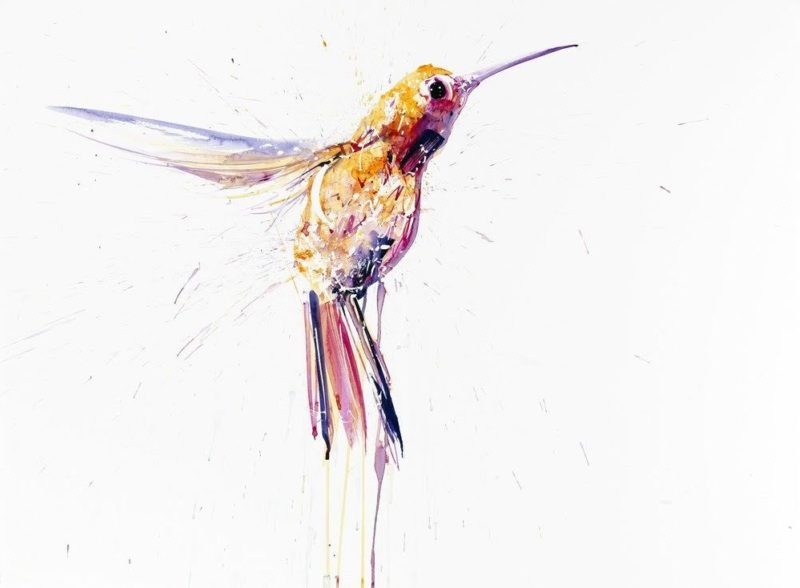 Hummingbird XL (Pink)