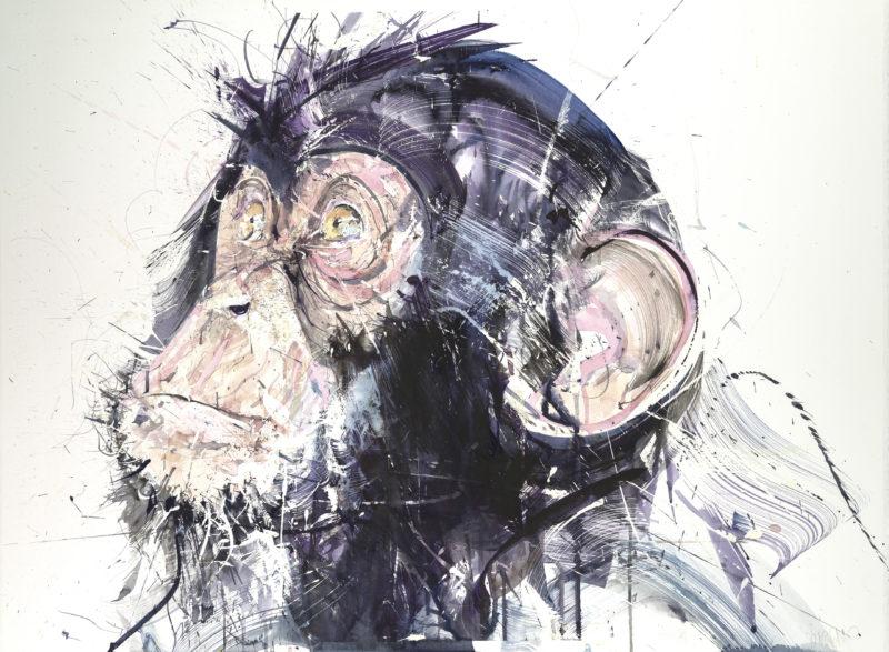 Chimp III
