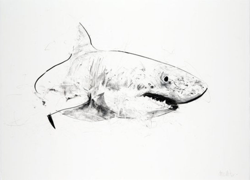 Great White (Large)
