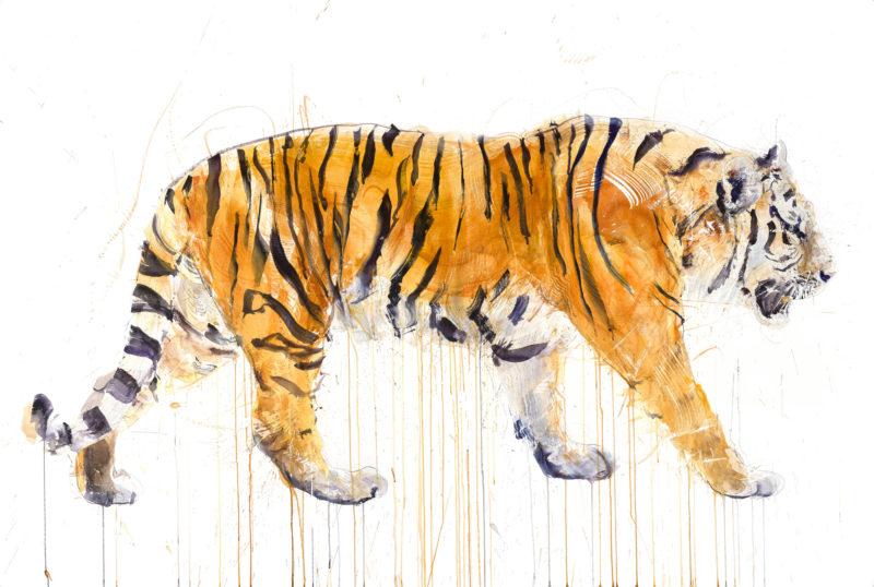 Tiger (Diamond Dust) - Artist Proof
