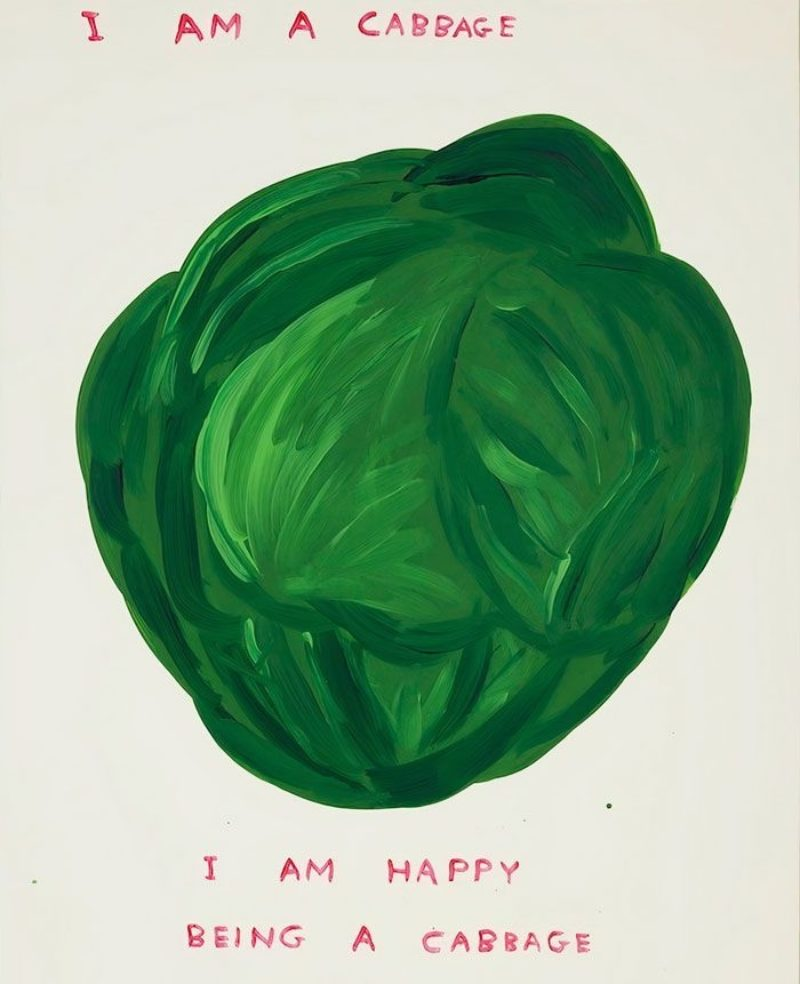 Untitled (I Am a Cabbage)