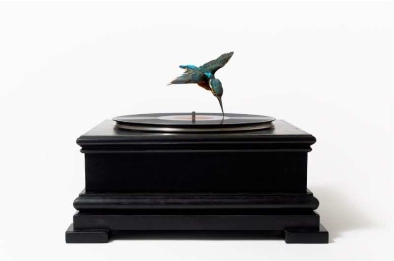Bird on Record Player
