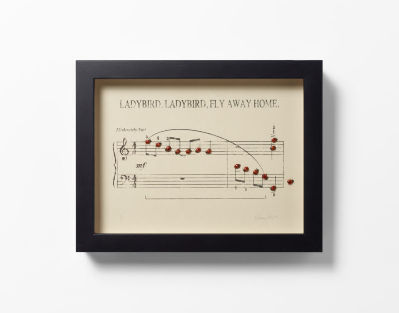 Ladybird, Ladybird, Fly Away Home