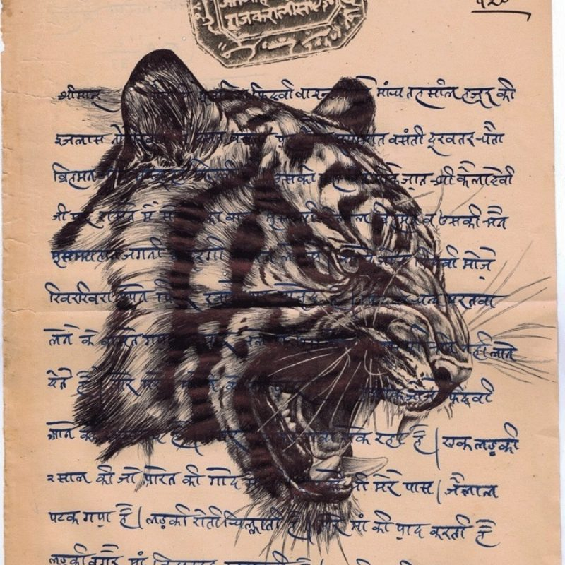 Mark Powell, Otto Schade, Magnus Gjoen, Lauren Baker create art to Save the Wild Tigers in Thrive